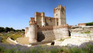 Castillo de la Mota 1
