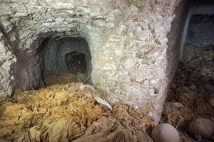 Imágenes del descubrimiento (CSIC)