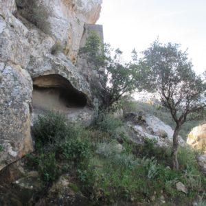 Entorno de la Cueva del Pajarraco (Ángel Sáez Rodríguez).