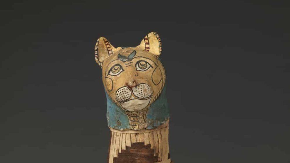 Momia de gato, pieza expuesta en CaixaForum Madrid.
