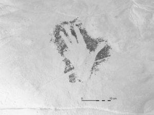 Calco de la mano anterior de la Cueva de las Estrellas realizado por Manuel Bea | Proyecto HANDPAS. Manos del Pasado. Programa CREATIVA de la Unión Europea.