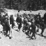 Partisanos del Ejército Democrático de Grecia 1946-49